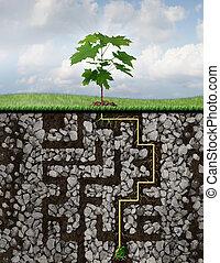 crescimento, soluções