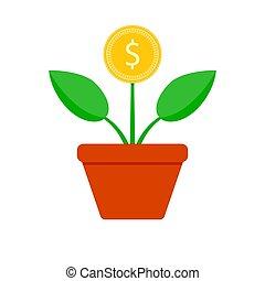 crescita, albero, finanza, moneta