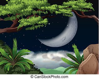 Cresent moon over jungle illustration