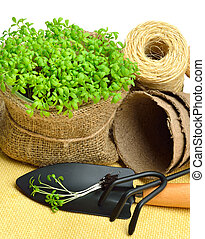 Cress salad on the flower bed with rake, shovel, peat cups, rope