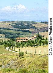 Crete Senesi (Tuscany, Italy) - Crete senesi, characteristic...