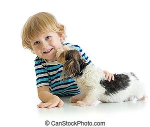 criança, menino, com, seu, filhote cachorro, dog., isolado, branco, experiência.