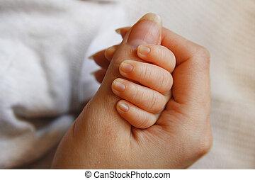 criança pequena, segura, pai, mão