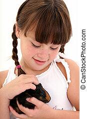 criança, porco guinea, animal estimação
