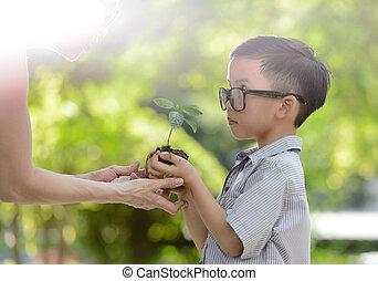 criança, segurando, planta jovem, em, mãos, com, um, esperança, de, bom, meio ambiente