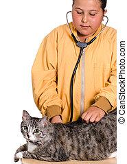 criança, veterinário