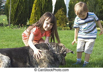 crianças, com, cão