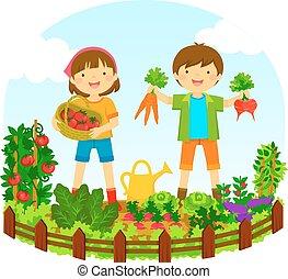 crianças, em, um, jardim vegetal