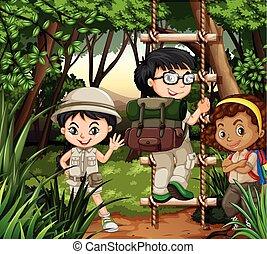 crianças, floresta, hiking