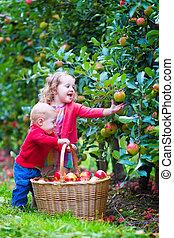 crianças, maçã, jardim, tocando