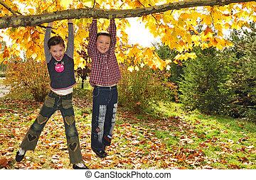 crianças, penduradas, de, ramo, de, árvore
