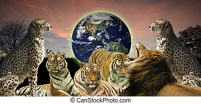 criativo, conceito, imagem, de, animal, fauna, protegendo,...