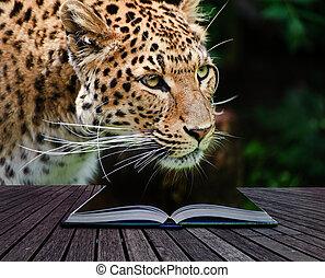 criativo, conceito, imagem, oleopard, em, páginas, de, livro