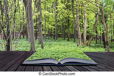 criativo, conceito, páginas, de, livro, bonito, vibrante, verde, crescimento, em, primavera, floresta, paisagem