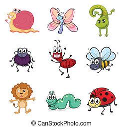 criaturas coloridas