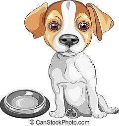 cric, terrier, race, vecteur, croquis, chien, russell