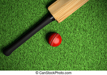 cricekt ball on green grass