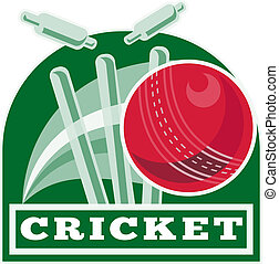 cricket ball bowling wicket - illustration of a cricket ball...