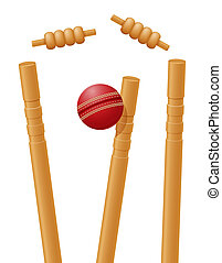cricket ball caught in the wicket illustration