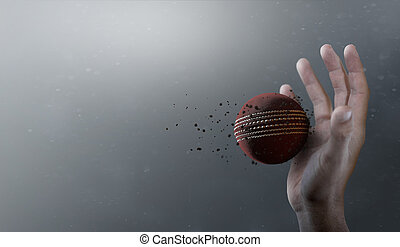 Cricket Ball In Flight