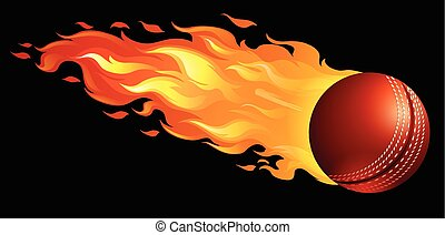 Cricket ball on fire illustration