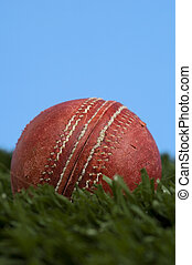 Cricket ball on grass with blue sky