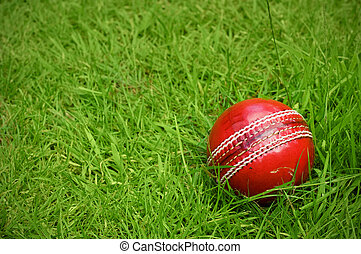 cricket ball on green grass pitch
