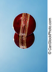 Cricket ball reflection