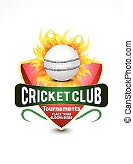 cricket banner background