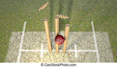 cricket bold, finder, wickets