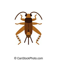 Cricket Bug grig insect single flat vector icon