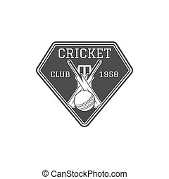 Cricket club emblem and design elements. team logo . stamp. Sports fun symbols with equipment - bats, ball. Use for web , tee or print on t-shirt. Monochrome