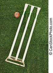 Cricket Equipment - A studio photo of cricket gear on grass