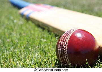 Cricket equipment.
