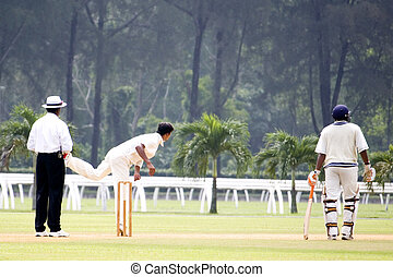 Cricket Game - Players in action in an international...