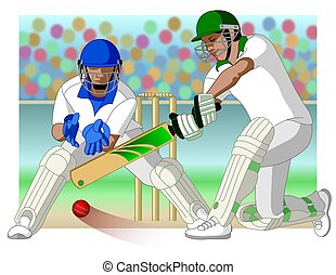 cricket game with batsman and wicket-keeper