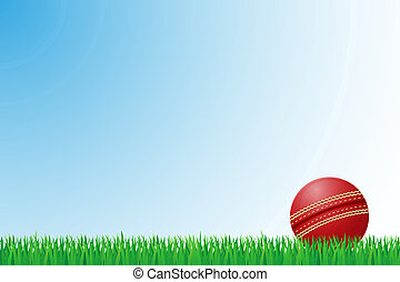 cricket grass field illustration