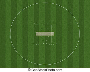Cricket Pitch And Field - A cricket pitch marked in white on...