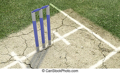 Cricket Pitch Ball And Wickets - A set of blue cricket...