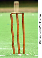 Cricket pitch with wicket and stump