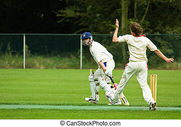 cricket players - cricket player just about to throw the...