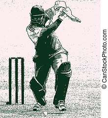 Cricket Shot - Right hand batsman cricket shot and wickets