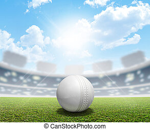 Cricket Stadium And Ball - A cricket stadium with a white...