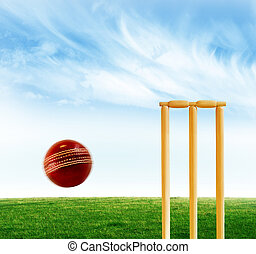 Cricket stumps and ball