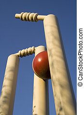 Cricket stumps shattered against clear blue sky - Close-up...