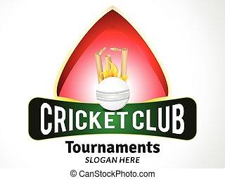 cricket tournament style banner