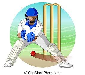 cricket wicket keeper - cricket wicket-keeper catching...