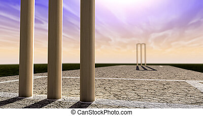 Cricket Wickets On Pitch Horizon Both Perspective - A...