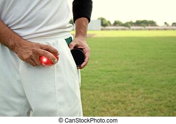 Cricketer shining ball with shoe polish
