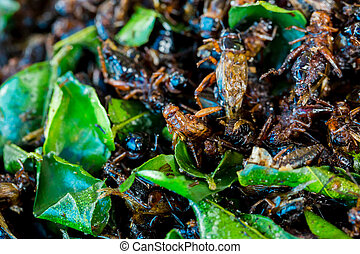 Cricketsfried or fried bug with kaffir lime leaf in a pan ...